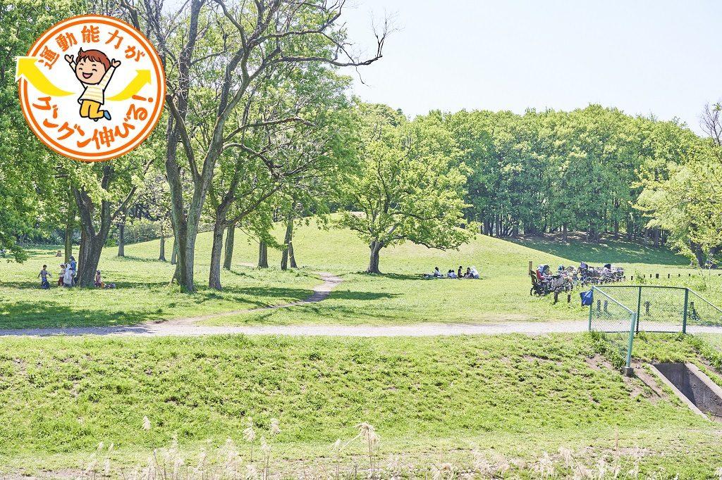 野川沿いにある武蔵野公園(府中市)で自然のレジャーを楽しもう