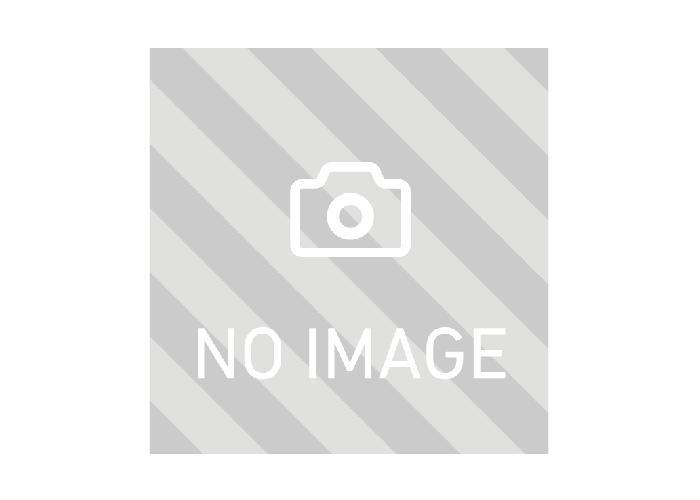 ランドケアエッセンスソープの画像