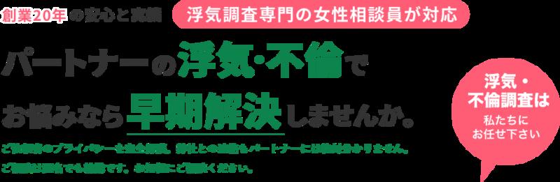 大阪クローバー総合調査