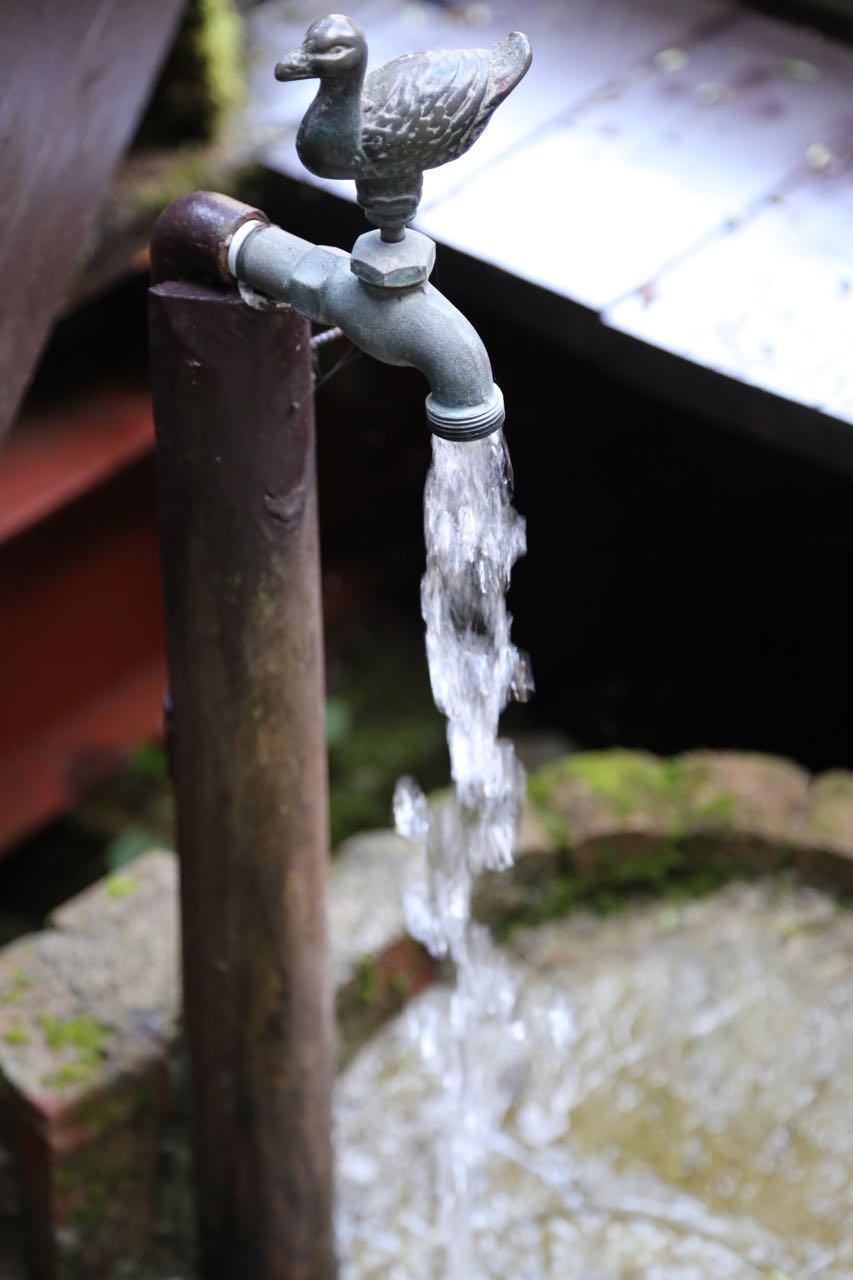 井戸水も気持ちいい