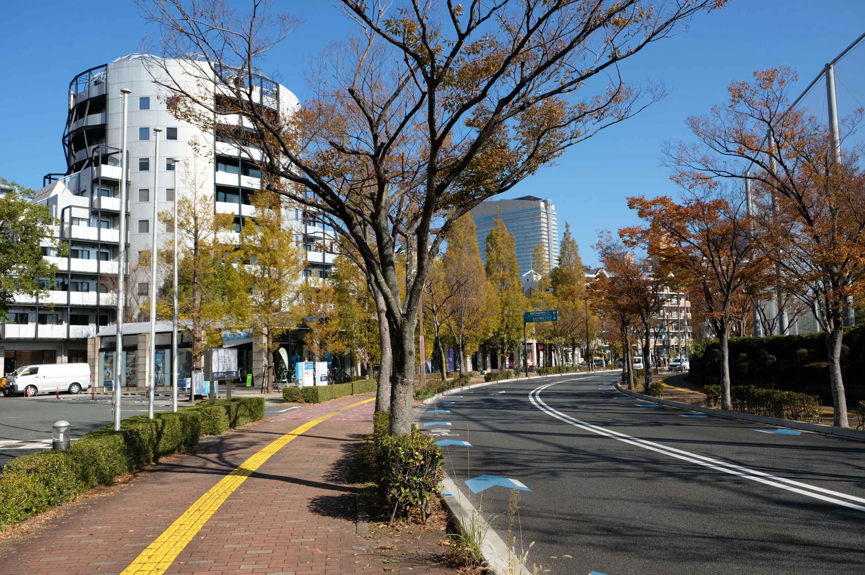 周辺は街路樹も多く穏やか