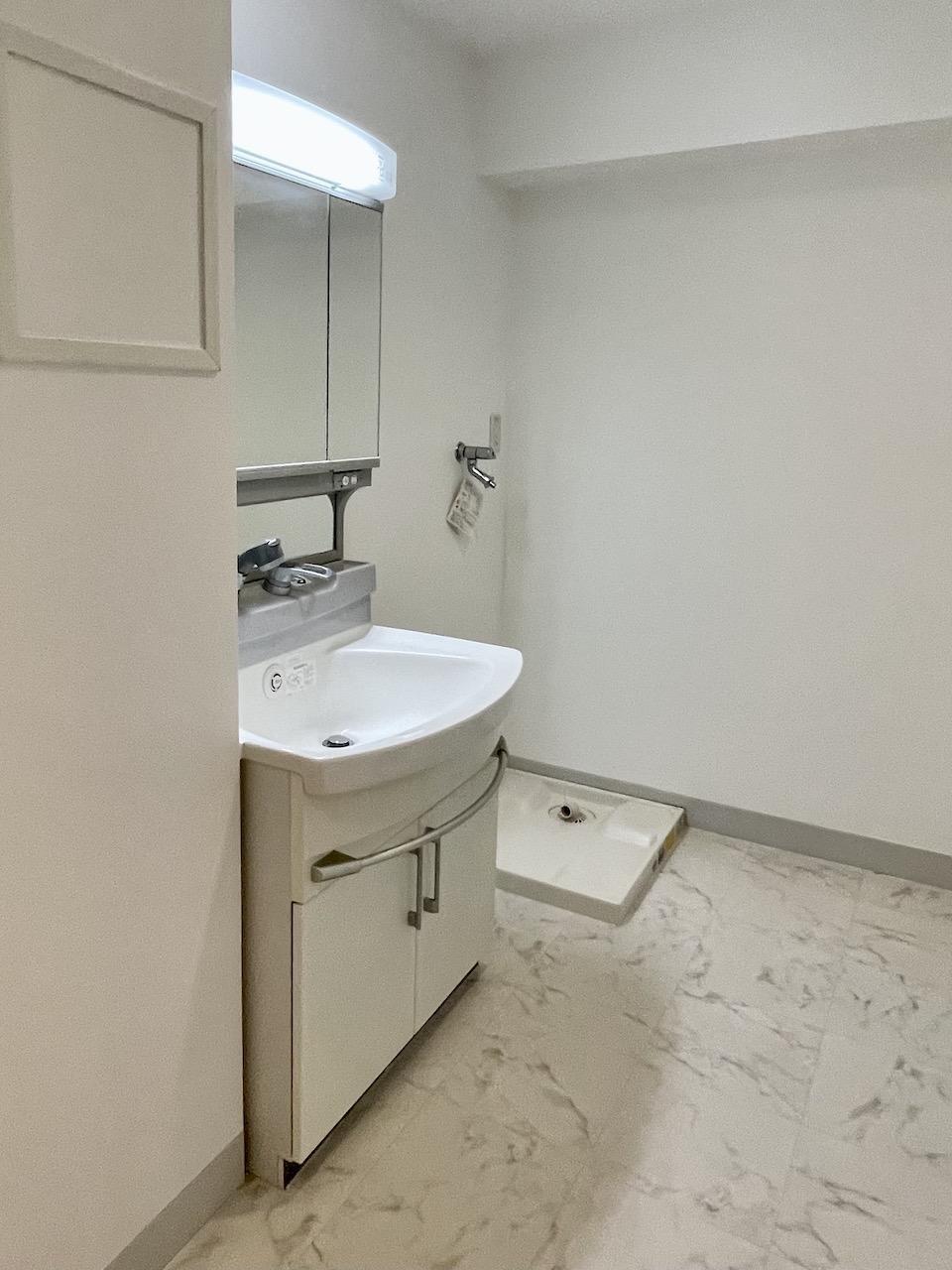 洗面所、洗濯機置場。