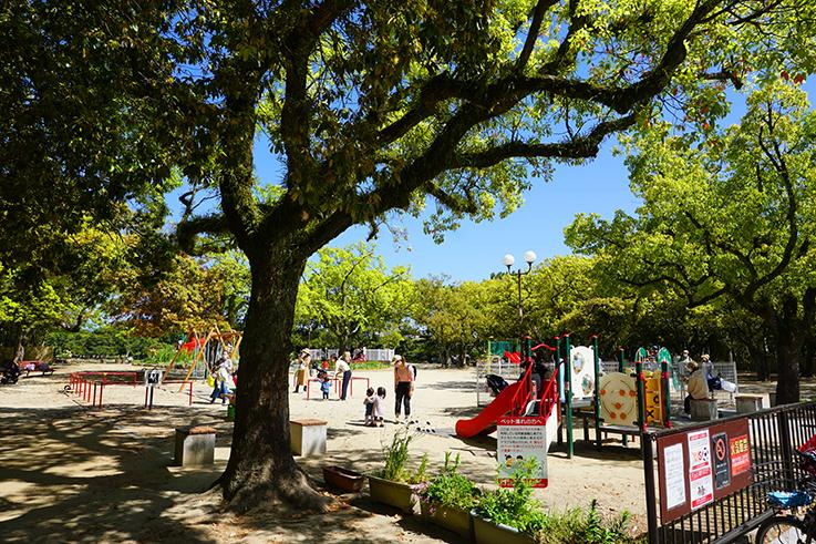 大濠公園内の「どんぐり公園」徒歩1分足らずで着いちゃいます。