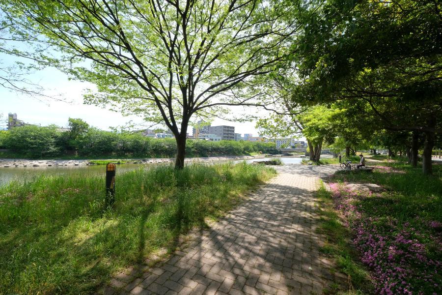 美野島南公園。ここ、最高ですねー。
