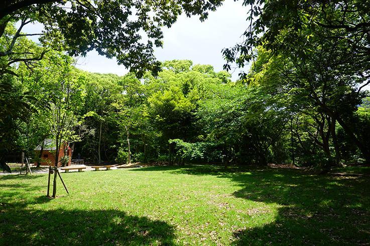 近くの赤坂公園。ピクニックしたくなる芝生です。管理が行き届いています。
