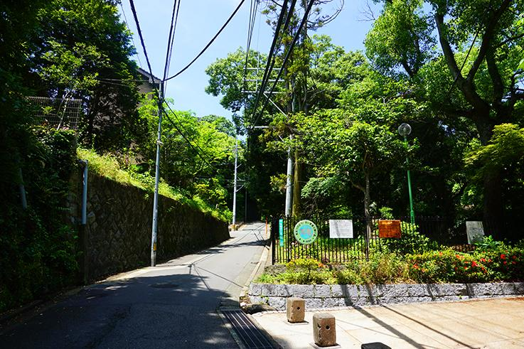 前面道路。この坂を下ると知る人ぞ知る、和菓子の名店有り。