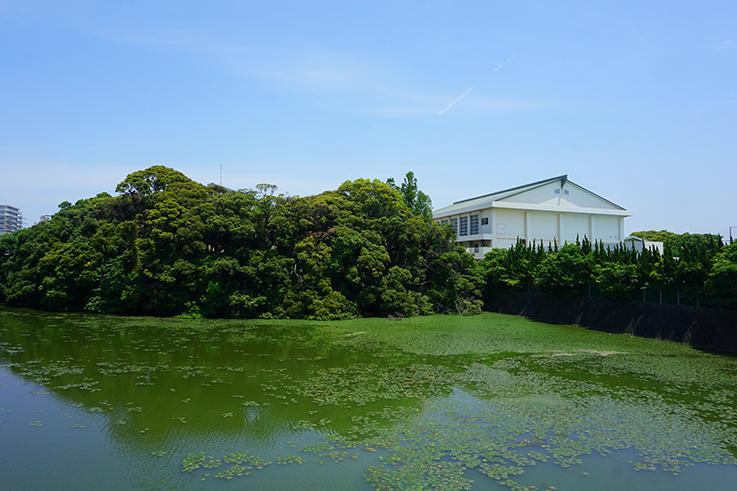 こんもり緑と、右に見えているのは糸島高校の体育館。
