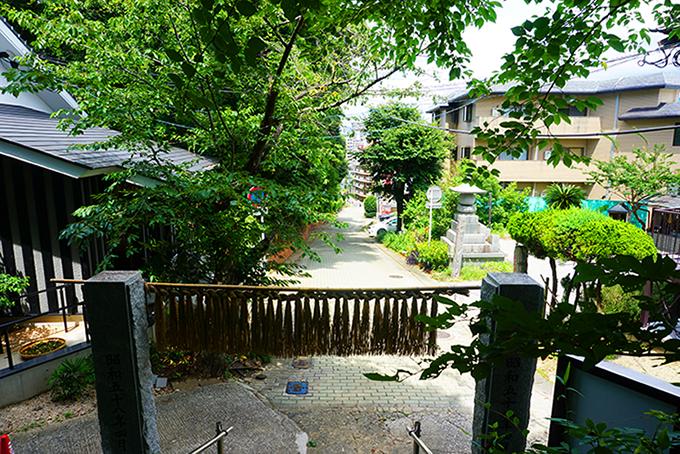 坂を登るとそこには金刀比羅神社が。緑地もありますので、ペットの散歩にも重宝しそうですね。