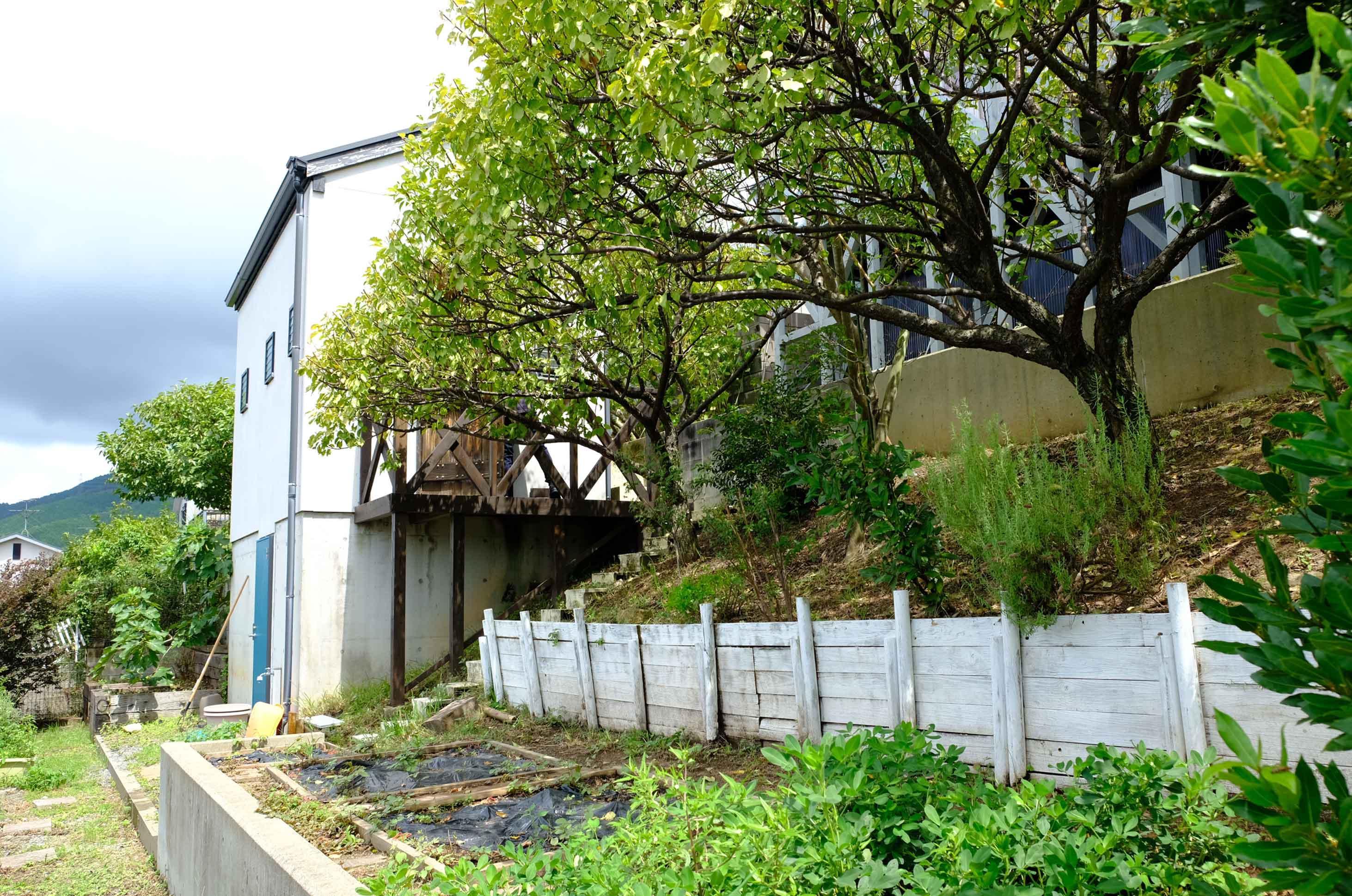 敷地内は緑でいっぱい、小屋の地下は倉庫になっているのでお庭道具もここに