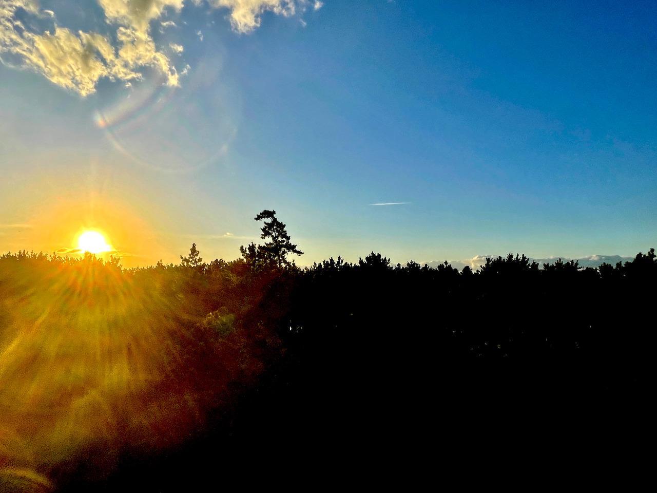 バルコニーから松林に沈む夕日。