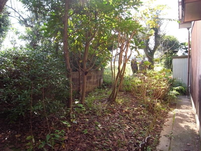 建物の北側にも少し庭があります。雑木が隣家との目隠しに。