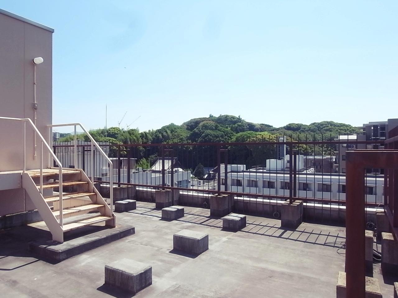 屋上。4Fから上の階は開口部から赤坂緑地が見えます。
