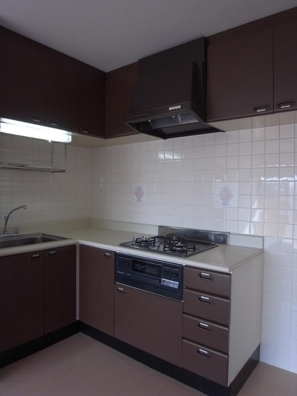 広めのキッチン。