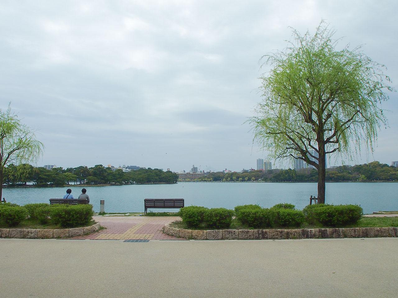 毎日お散歩したくなる大濠公園