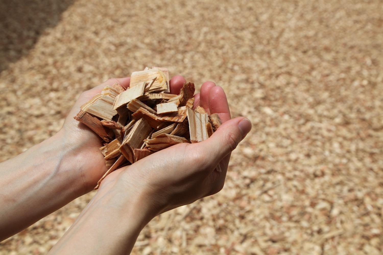 敷地には木のチップが敷かれています。