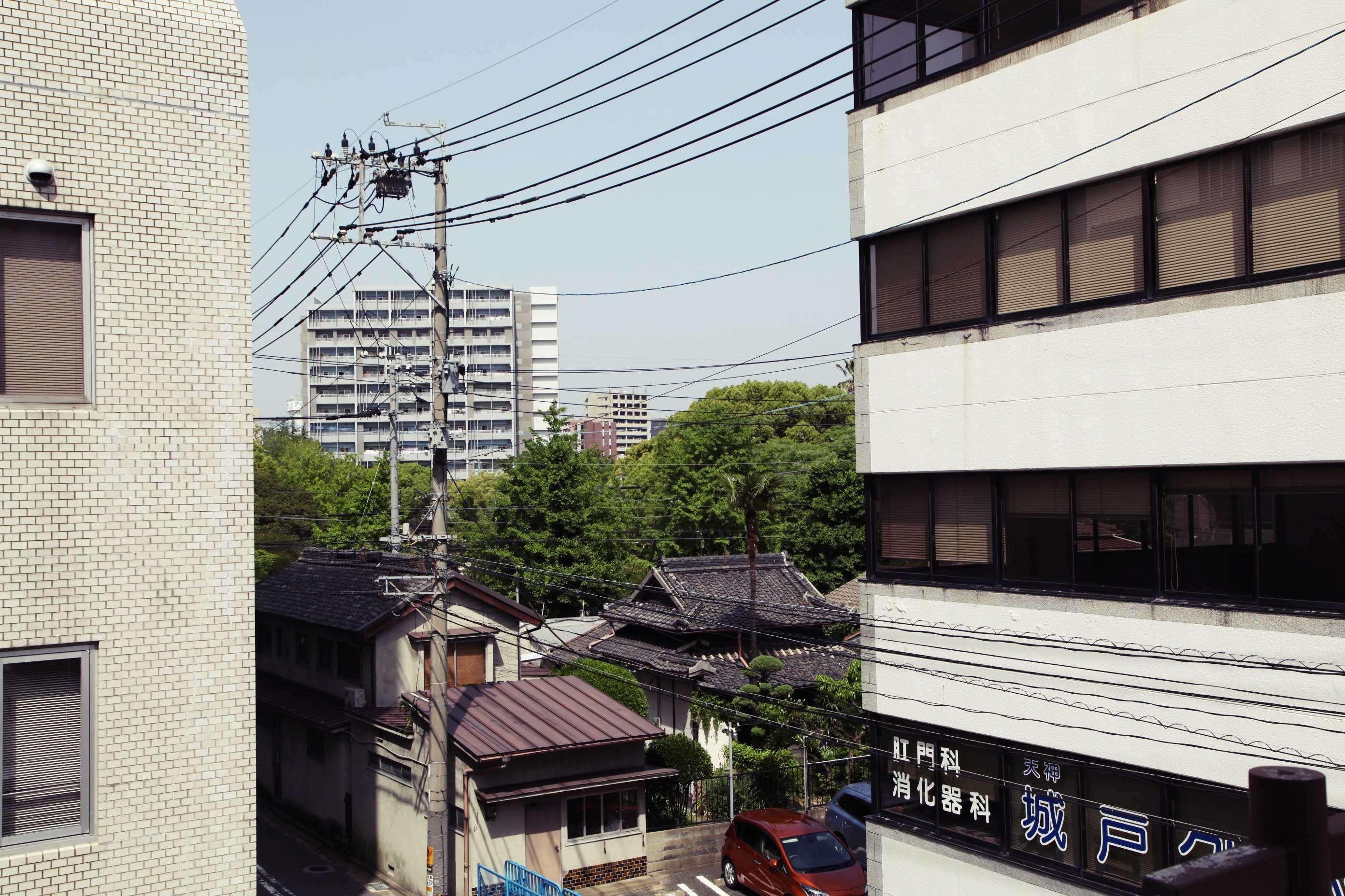 窓からはチラリ須崎公園。煮詰まったら散歩でも。