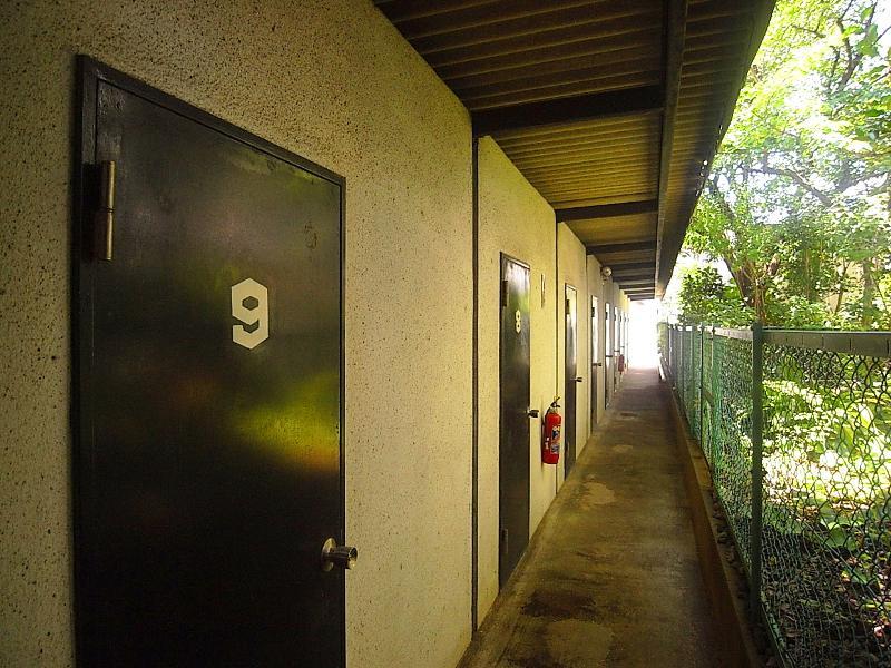 次に車庫から物件までの通路。