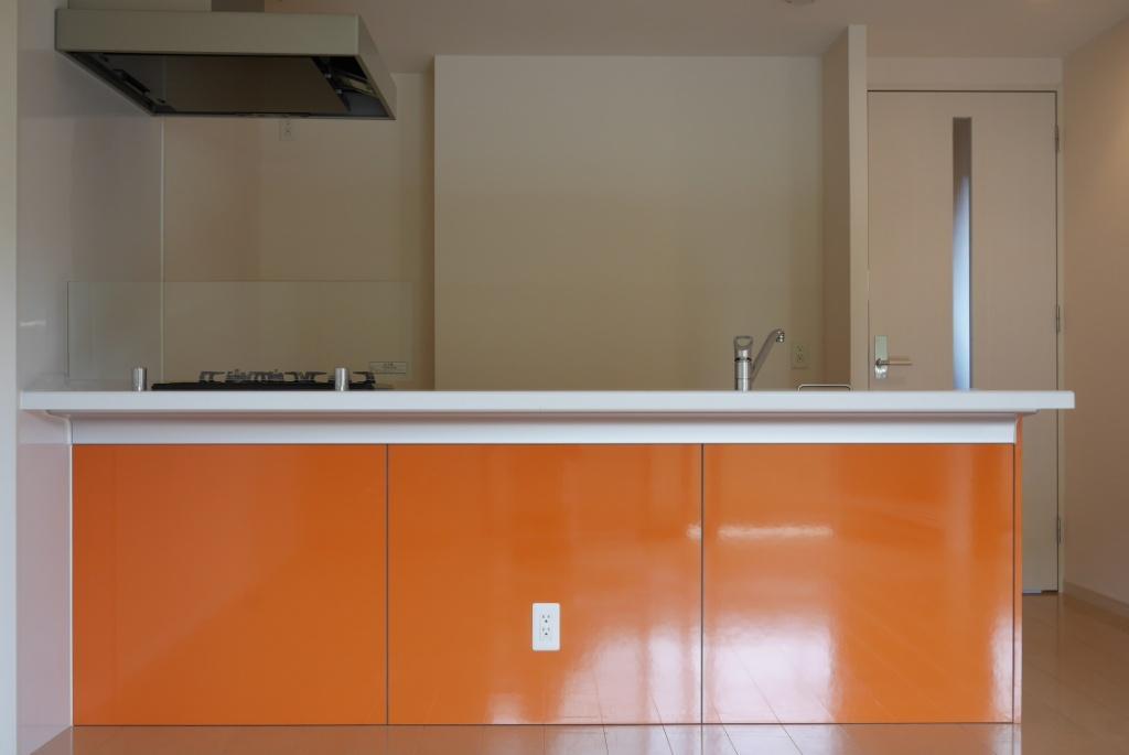 キッチンの色は好みが分かれるでしょうか