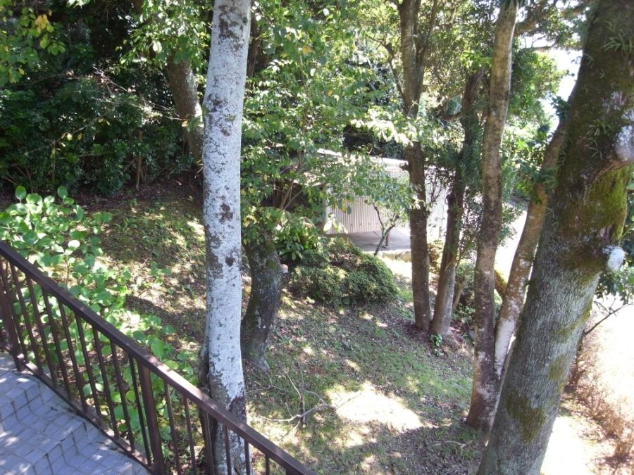 木漏れ日が心地よい玄関横の庭。駐車スペースも2台分確保されています。