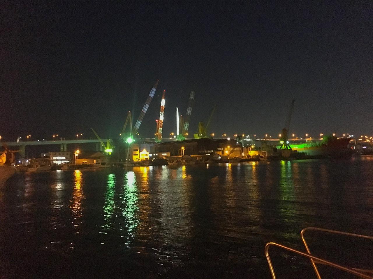 夜の港も素敵です