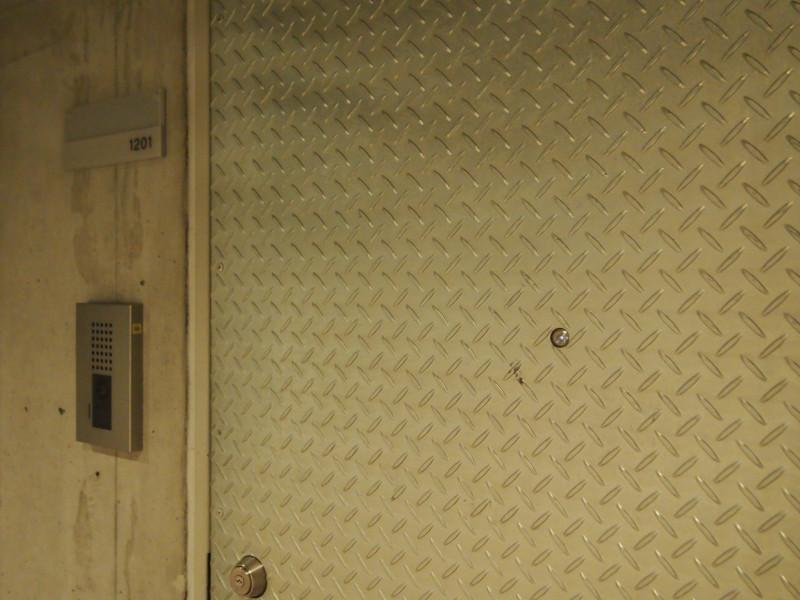 こんな玄関扉は僕は初めて見ました!