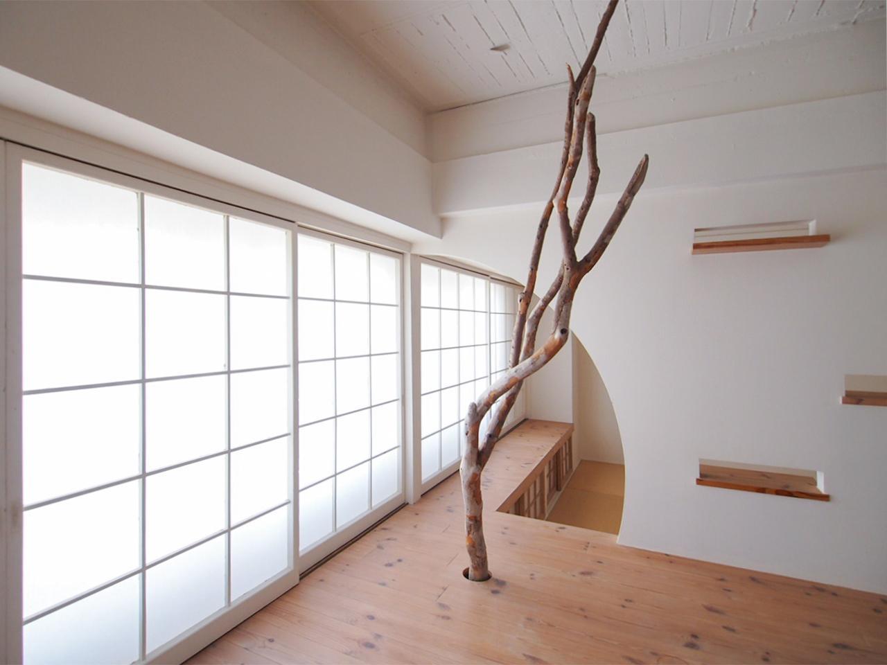 この部屋の象徴ともいえる流木のオブジェ