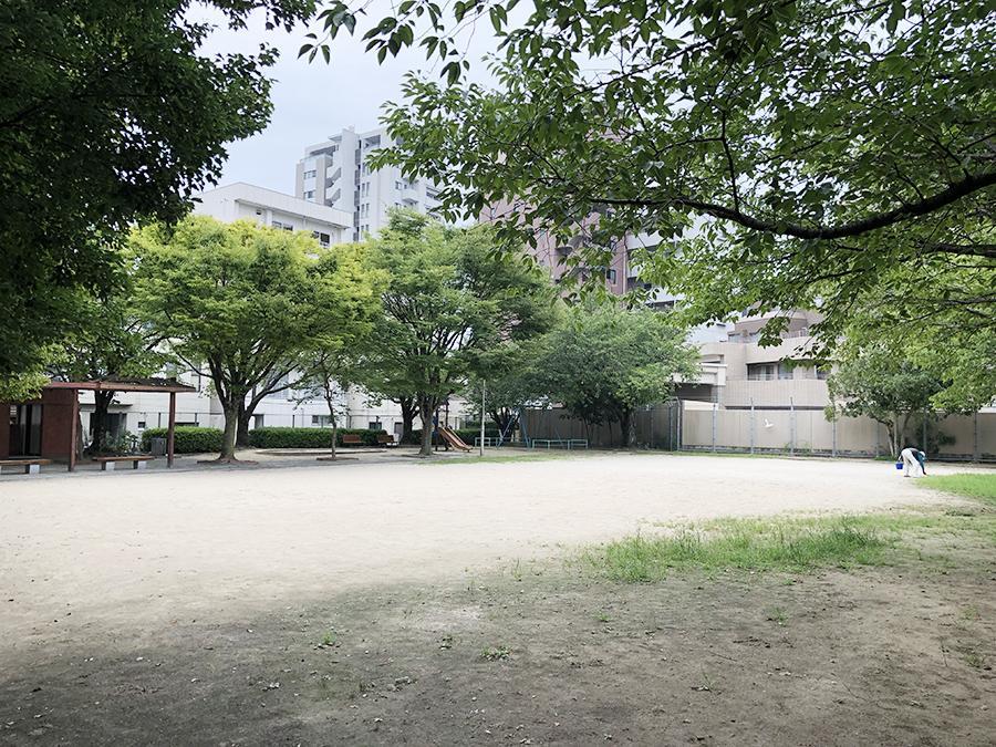 大橋南公園。