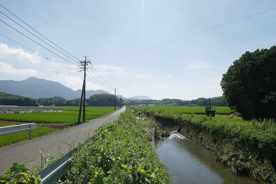 表の川と、スーッと伸びる一本道。