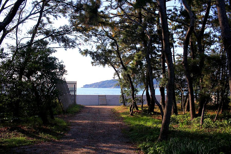 森の散歩道を抜けたら.....海!ここまで約徒歩5分です。