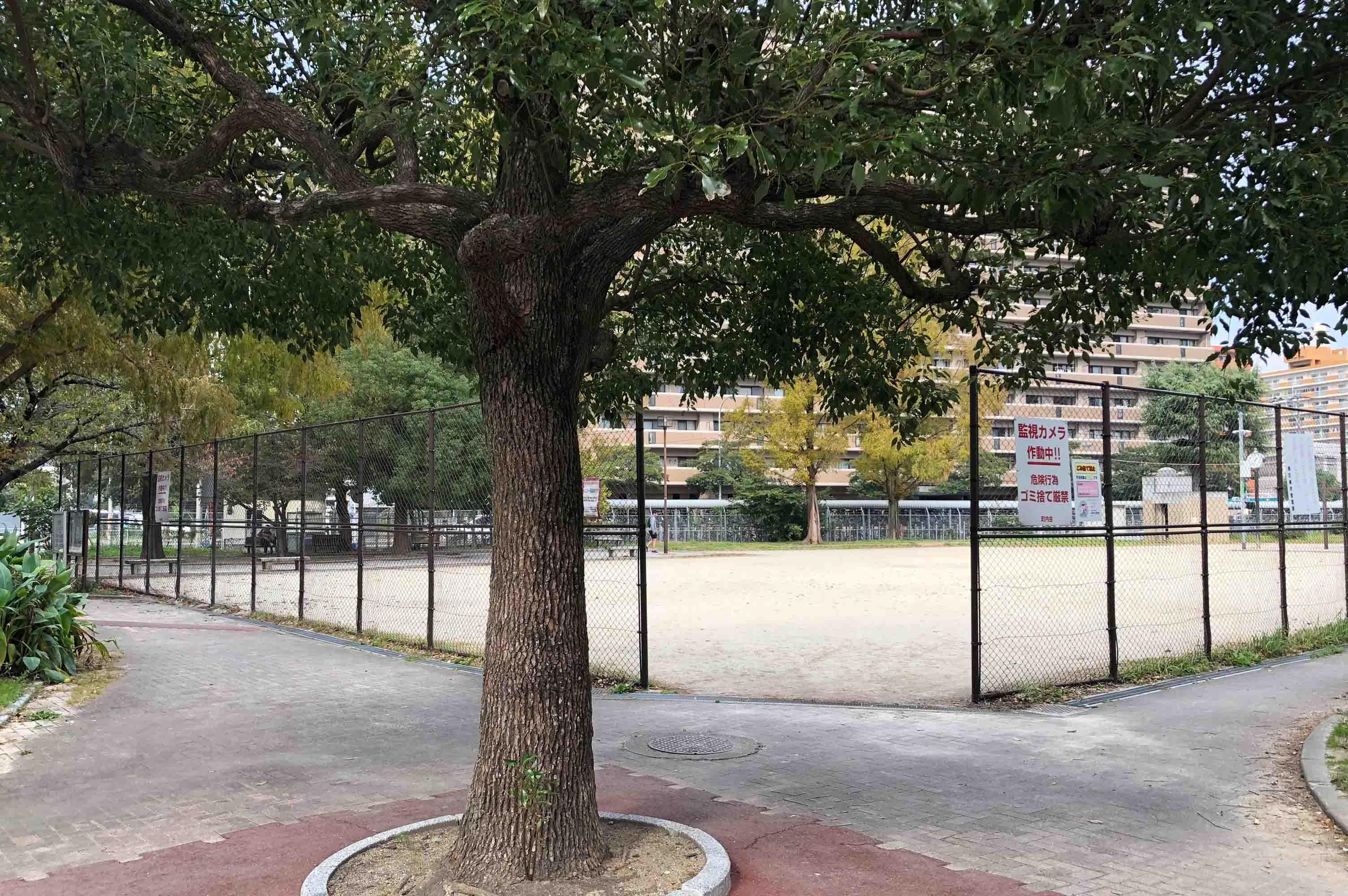 目下にある公園