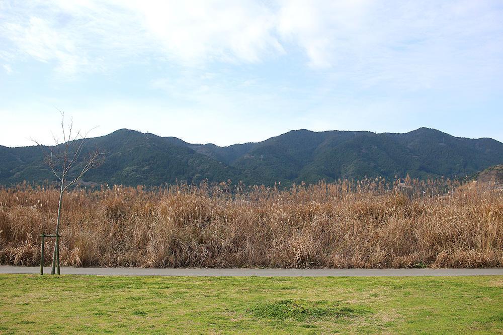 山と野原のロケーションで深呼吸。
