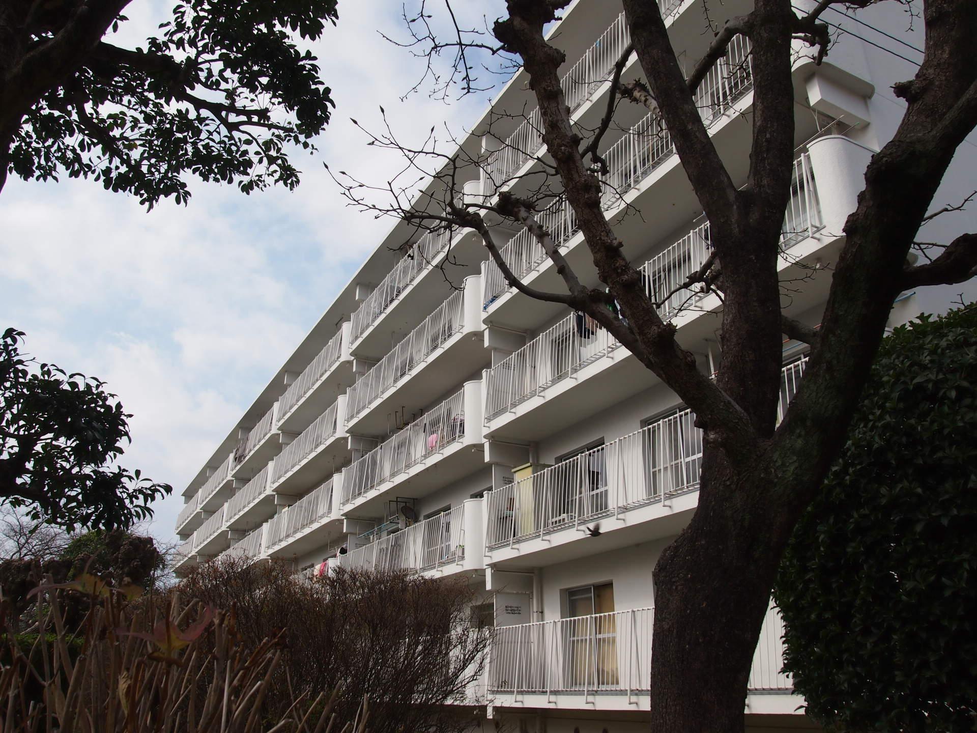 団地という贅沢 (福岡市中央区輝国の物件) - 福岡R不動産