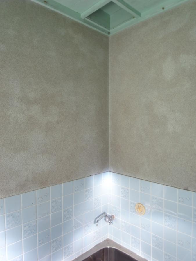 浴室内部はレトロな雰囲気。小さめのステンレス浴槽です。