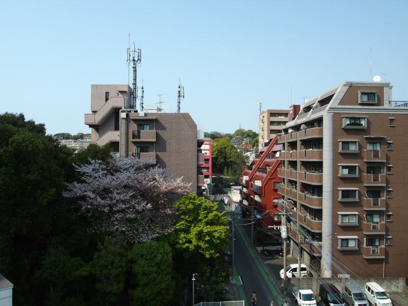 艦首からの景色。山桜がイイ感じ。奥に見える赤い建物がパチンコ屋ですがチラ見えくらいです。