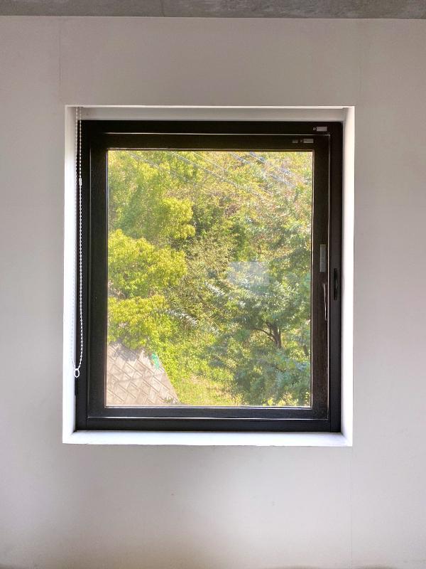 飾られた絵かと勘違いしてしまいそうな窓いっぱいの緑