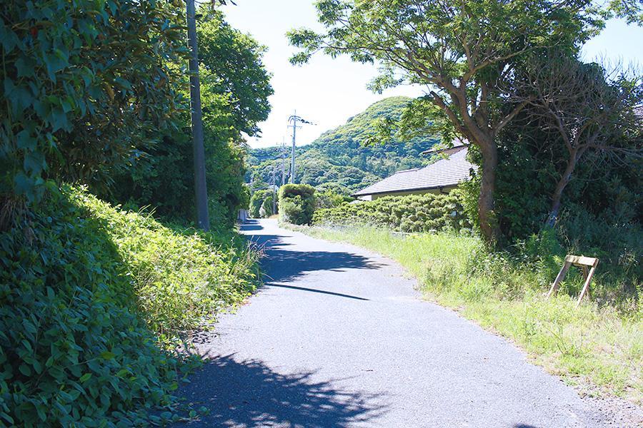 前面道路。狭いけど、良く言えば風情がある。