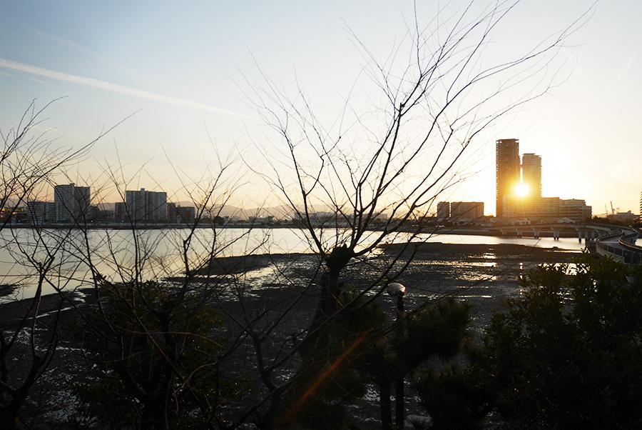 夕方の眺めも素敵です。(写真は冬時期のもの)