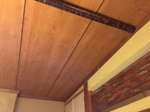 天井は縄文杉