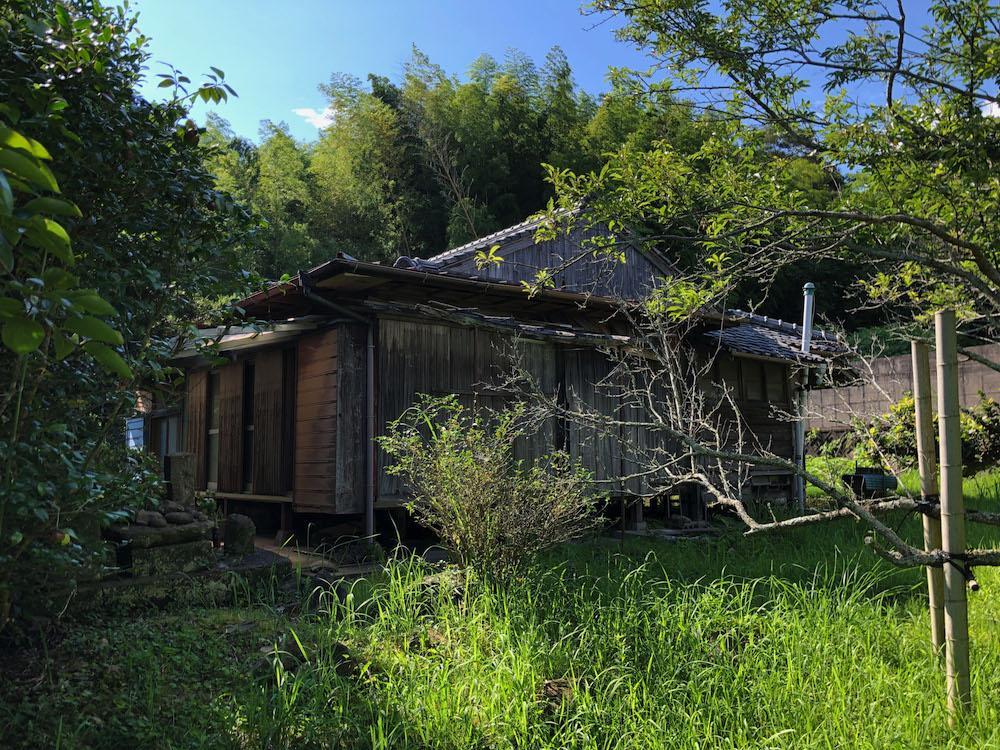 母屋の東側にも梅や琵琶の果樹畑。