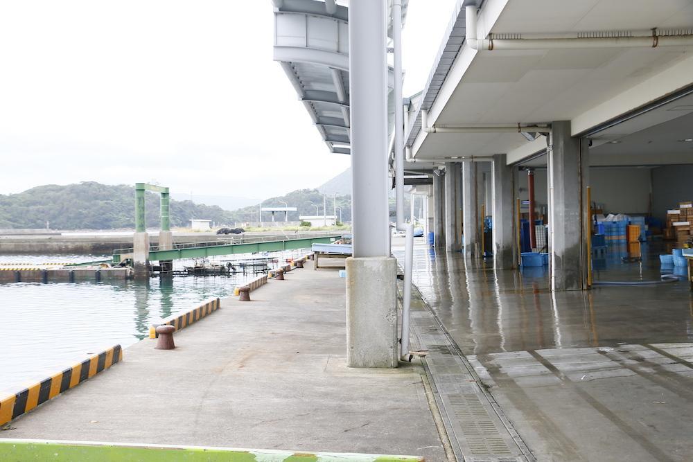 目の前の片浦漁港