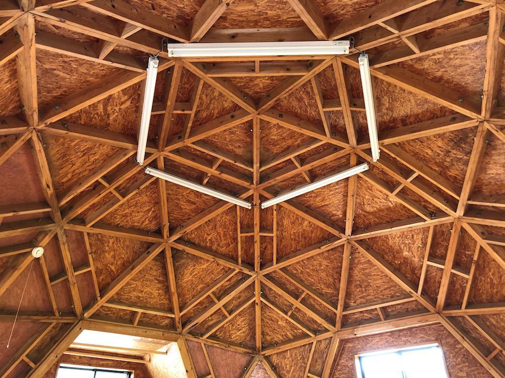 構造あらわしのドーム天井