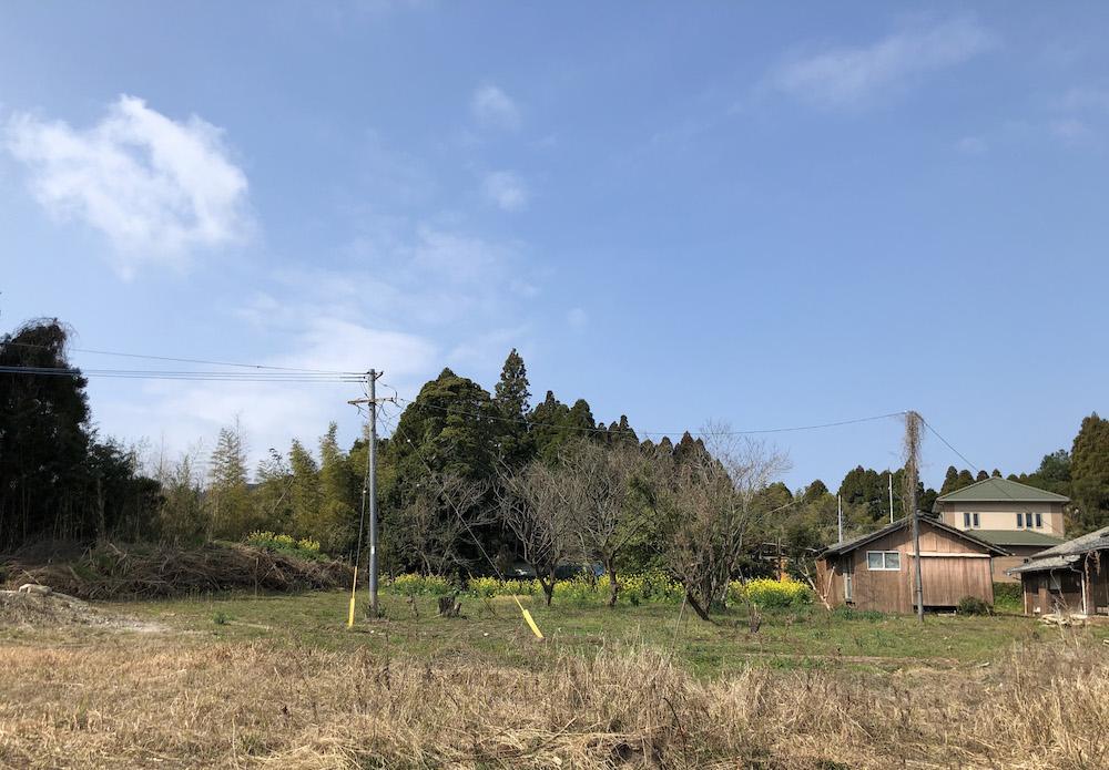 西側隣家の畑