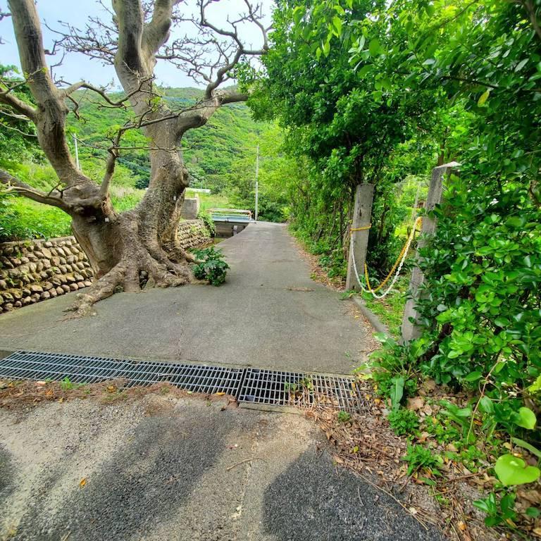 玄関先の大きな木が目印です。