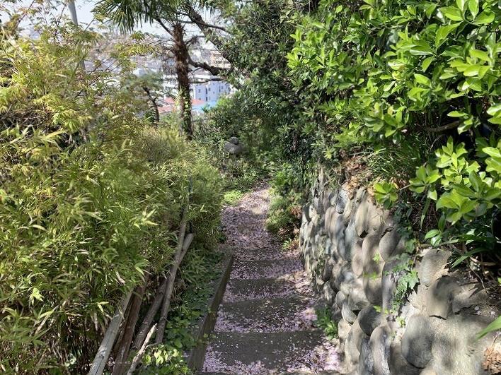 東側の階段|春には桜道に