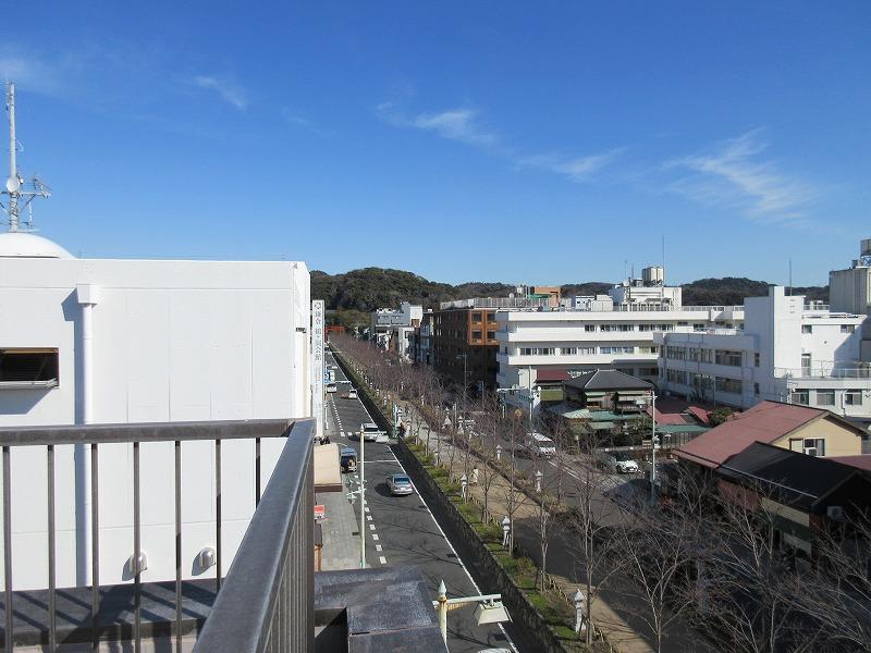 ギリギリ鶴岡八幡宮の鳥居が見えます