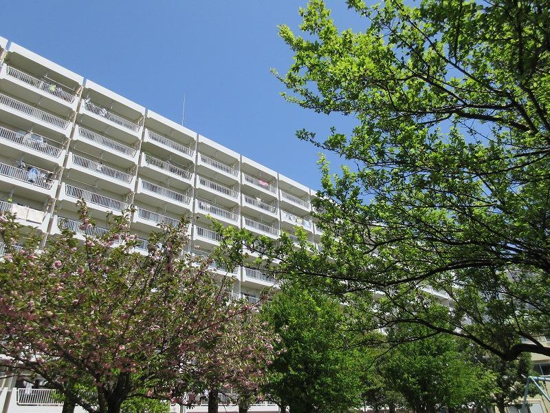 奥田公園からマンションを見るのも好き