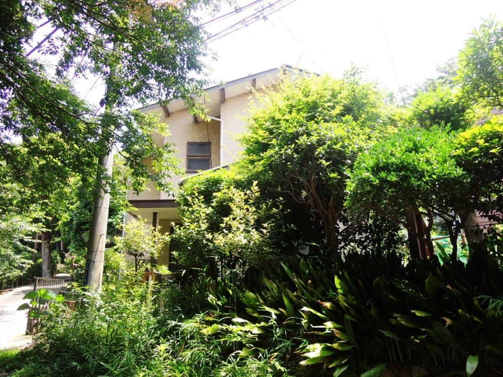 現状の建物は空き家の期間も長く、木々が伸び放題