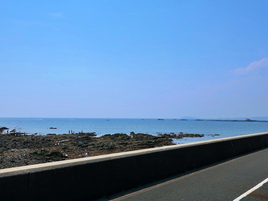 この道沿いの海の眺めが好き