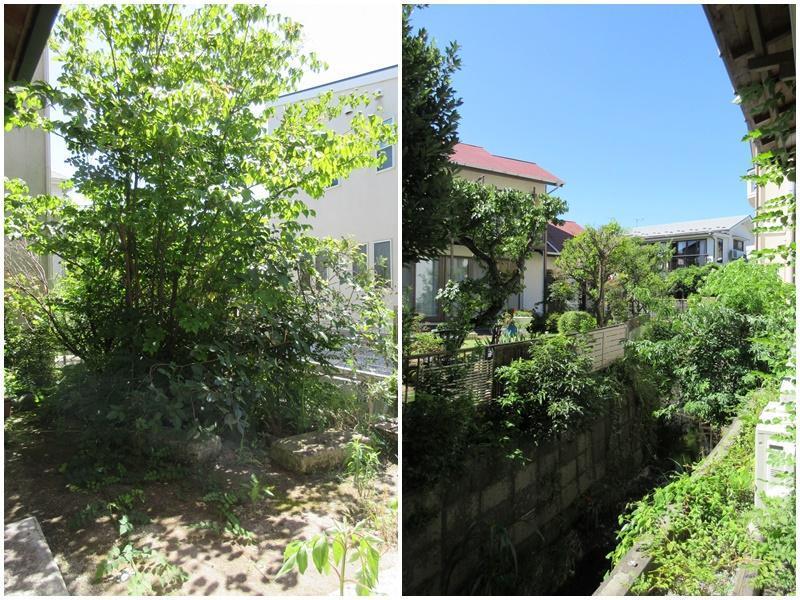 小さな庭があり、川に面している