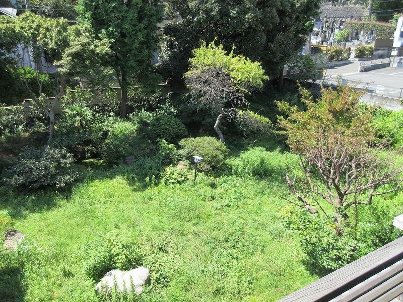 2階から庭を見る